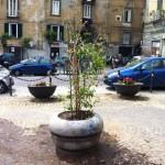 Rifacimento fioriere nello spazio antistante la chiesa di San Giovanni a Carbonara